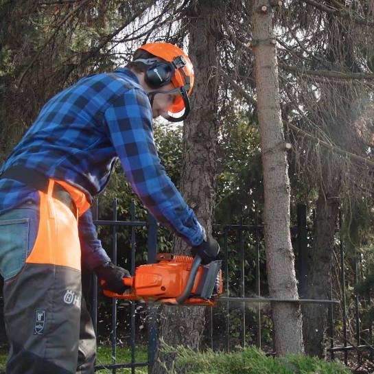 Schritt-für-Schritt-Plan: Baum fällen