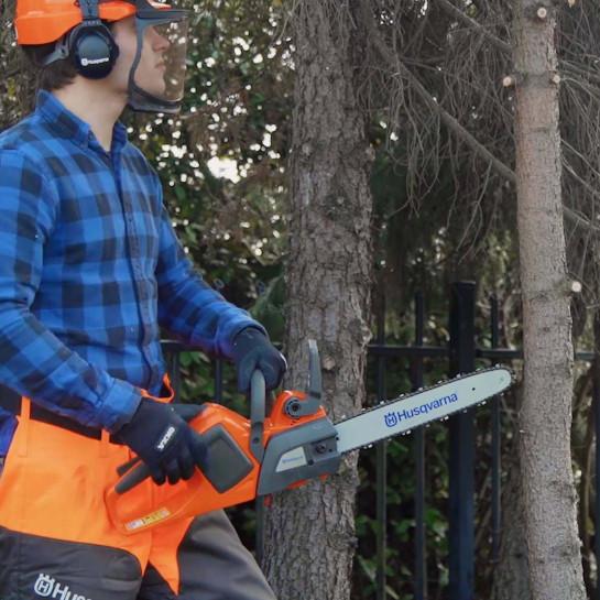 Schritt-für-Schritt-Plan: Baum schneiden
